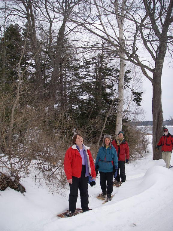 snowshoeing_group